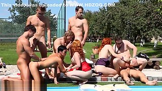 Bisexual group suck cocks